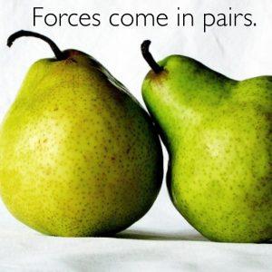 forcesinpairs